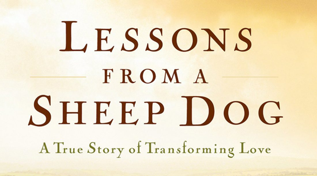 Book Review: Lessons From a Sheep Dog